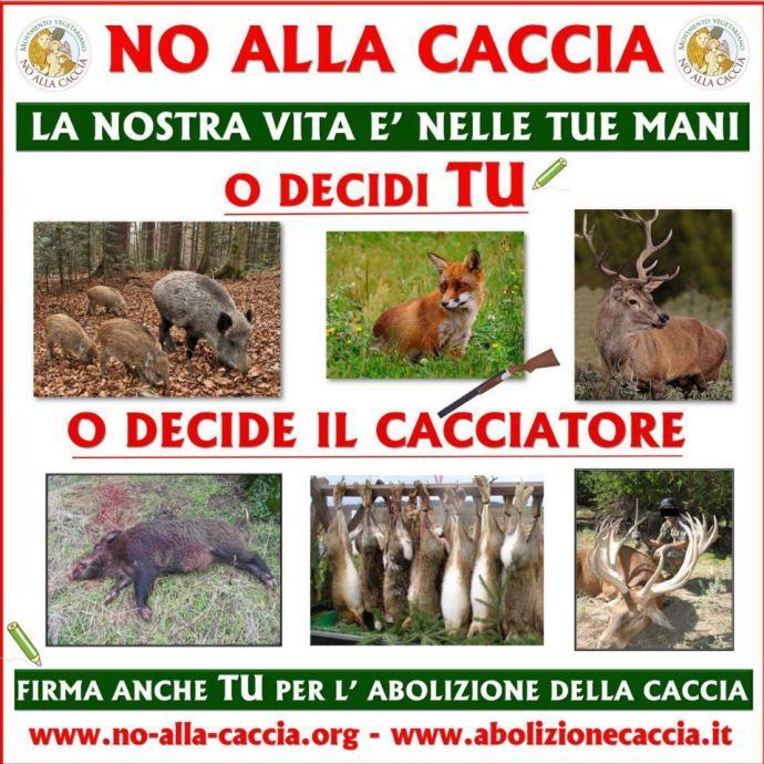 Risultati immagini per no caccia