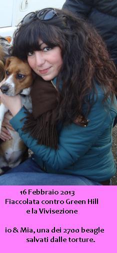 carmen beagle