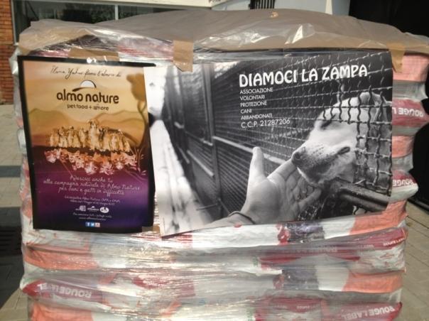 bancali Almo  x Gaia e Diamoci La Zampa foto-11 (2)