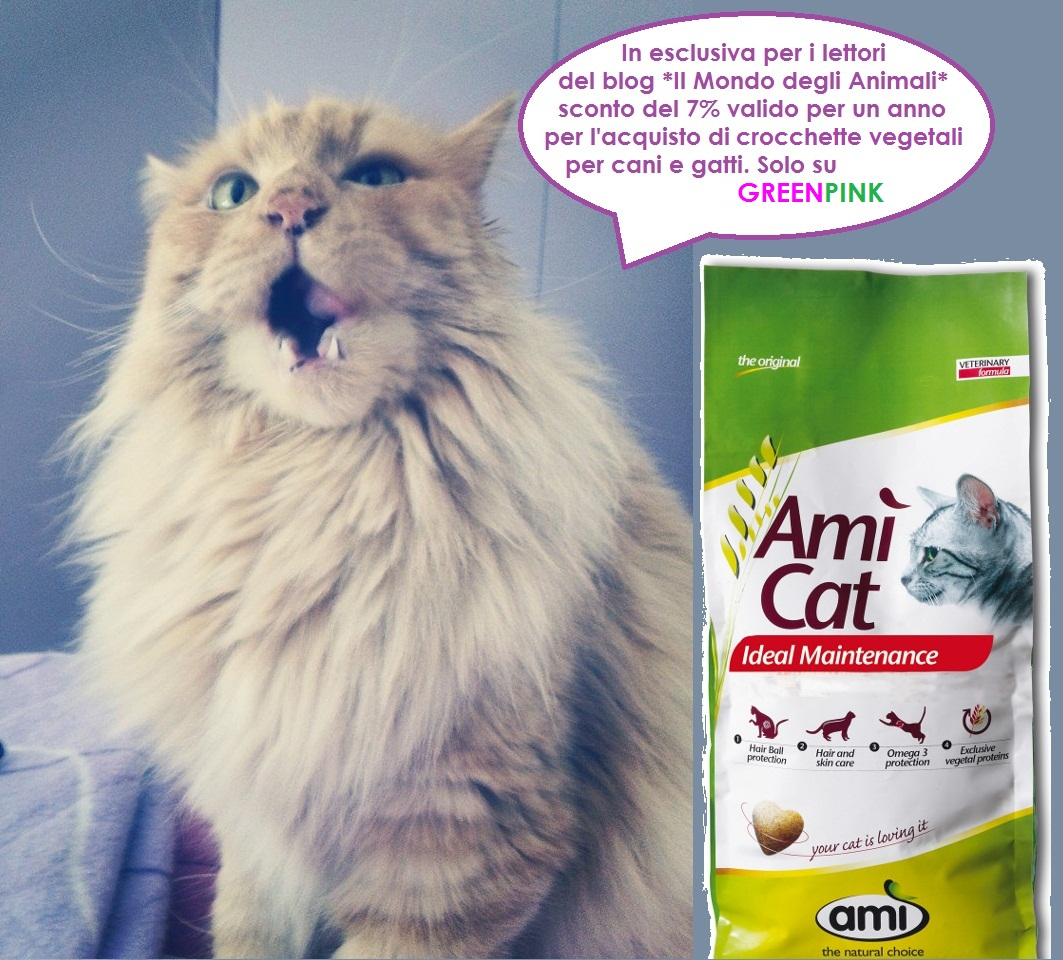 Ami Cat Vegan Cat Food  Oz
