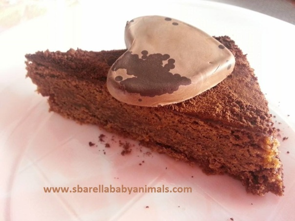 torta gianduia2