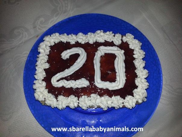 torta vanigliata morbida