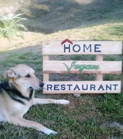home vegan restaurant