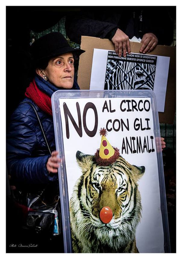 protesta5