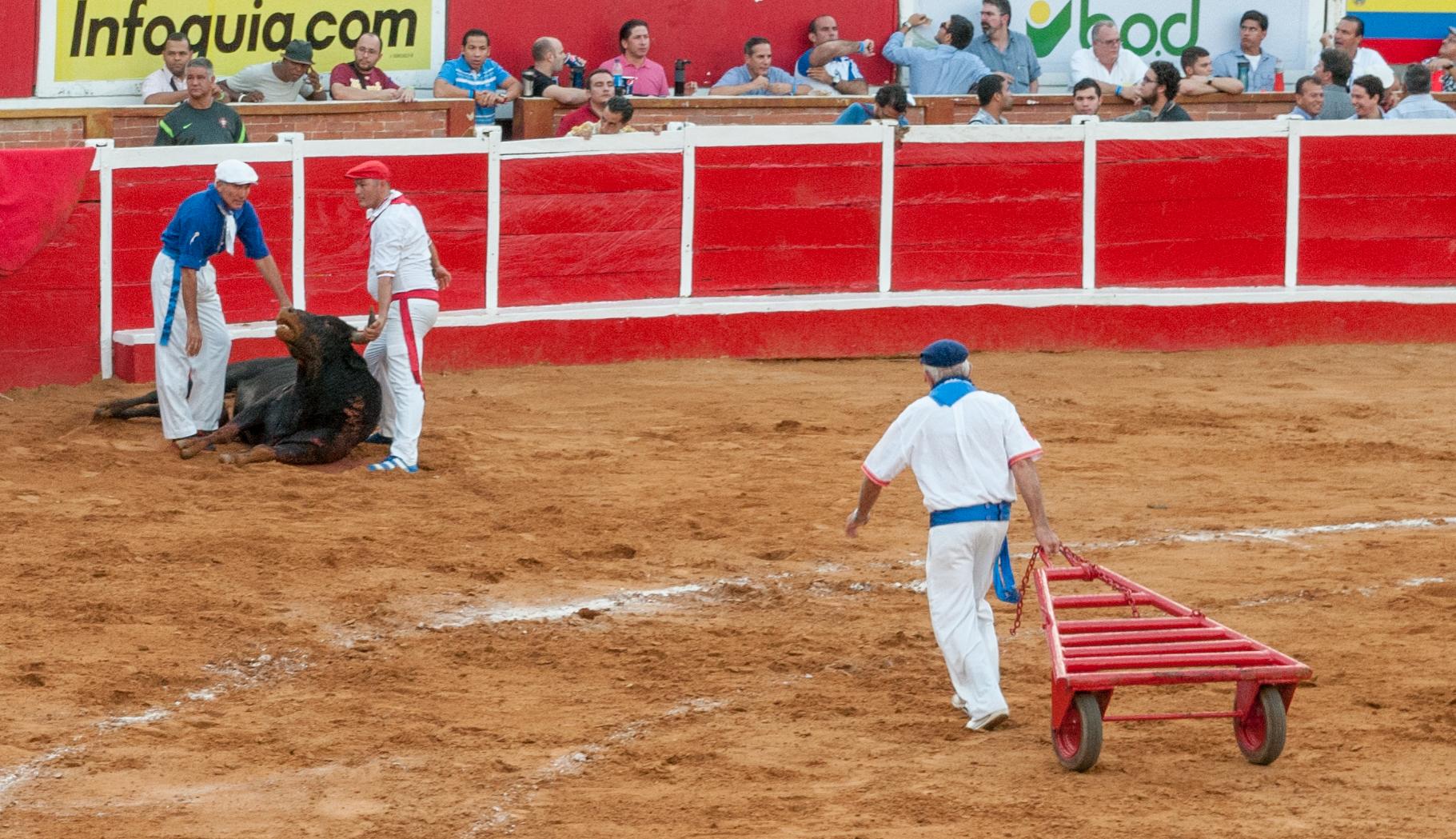 Plaza_de_Toros_Monumental_de_Maracaibo,_Corrida_01.jpg