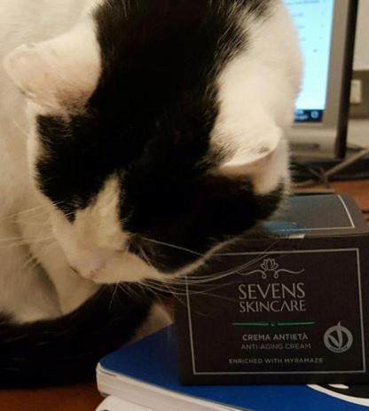 sevens skincare 2.jpg