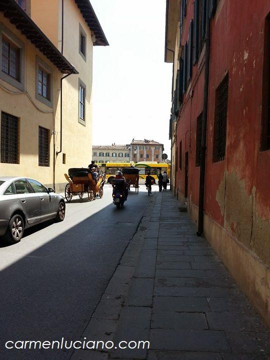 cavalli Pisa