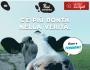 °°Latteria Soresina: Bagno e Massaggi alle Vacche daLatte°°